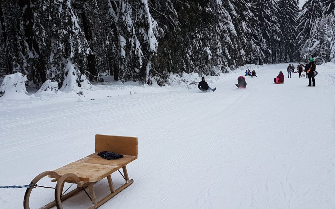 Wintersporttag der Klassen 4 – 9